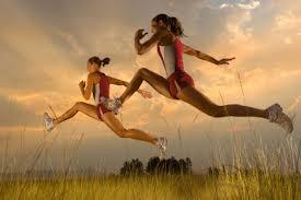 donnesport