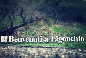 Ligonchio1_14nov13